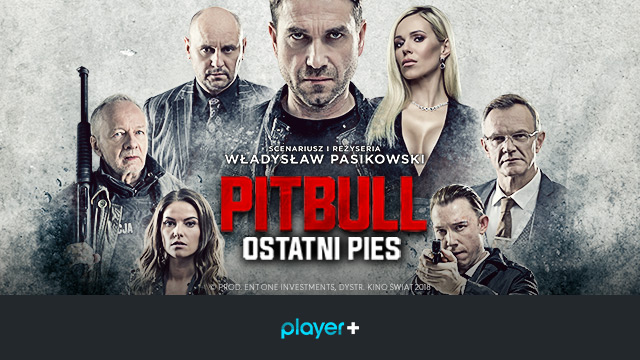 Pitbull Ostatni pies, Player+, Player.pl