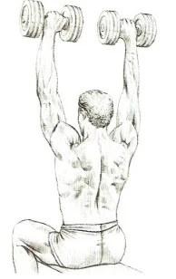 dumbbell shoulder press beste schouderoefeningen