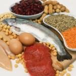 eiwitrijke vleesvervangers