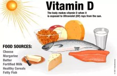 vitamine d en krachttraining