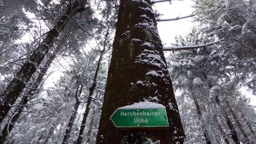 Herchenhainer Höhe - der erste Schnee