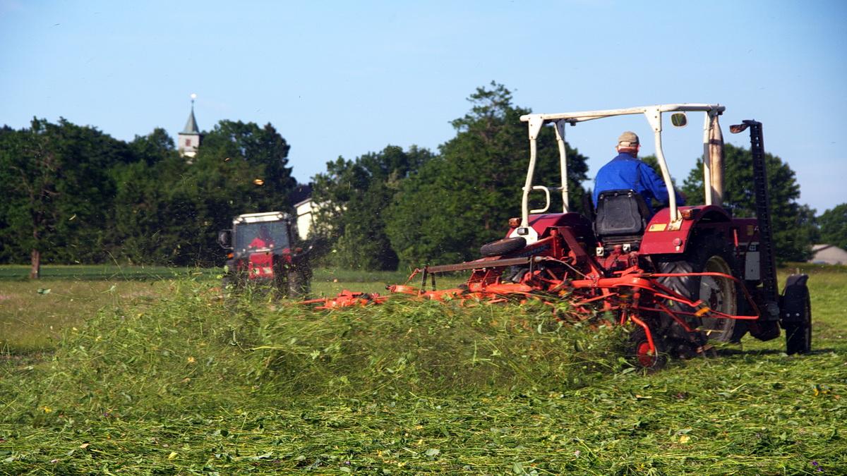 Landwirtschaft im Vogelsberg