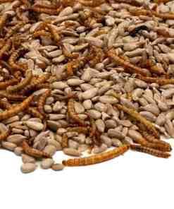 Gepelde zonnebloempitten met meelwormen