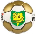 Auslosung Vogtlandpokal Herren am kommenden Donnerstag