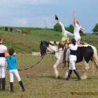 Mit Pferd und Gespann das Können auf dem Parcoursgelände gezeigt