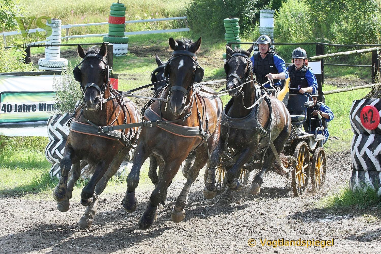 Thüringer Landesmeisterschaften im Gespannfahren 2012 in Mohlsdorf