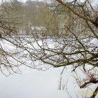 Winter im Fürstlich Greizer Park