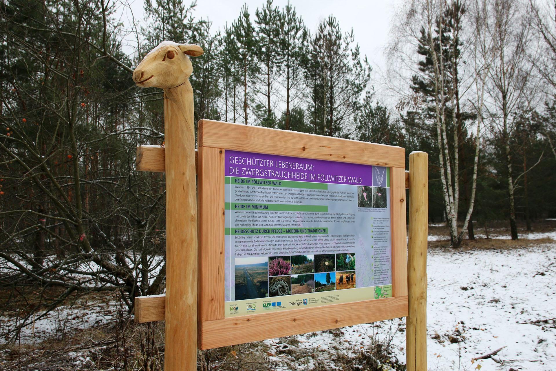 Pöllwitzer Wald: Neue Anschauungstafeln an den Heideflächen