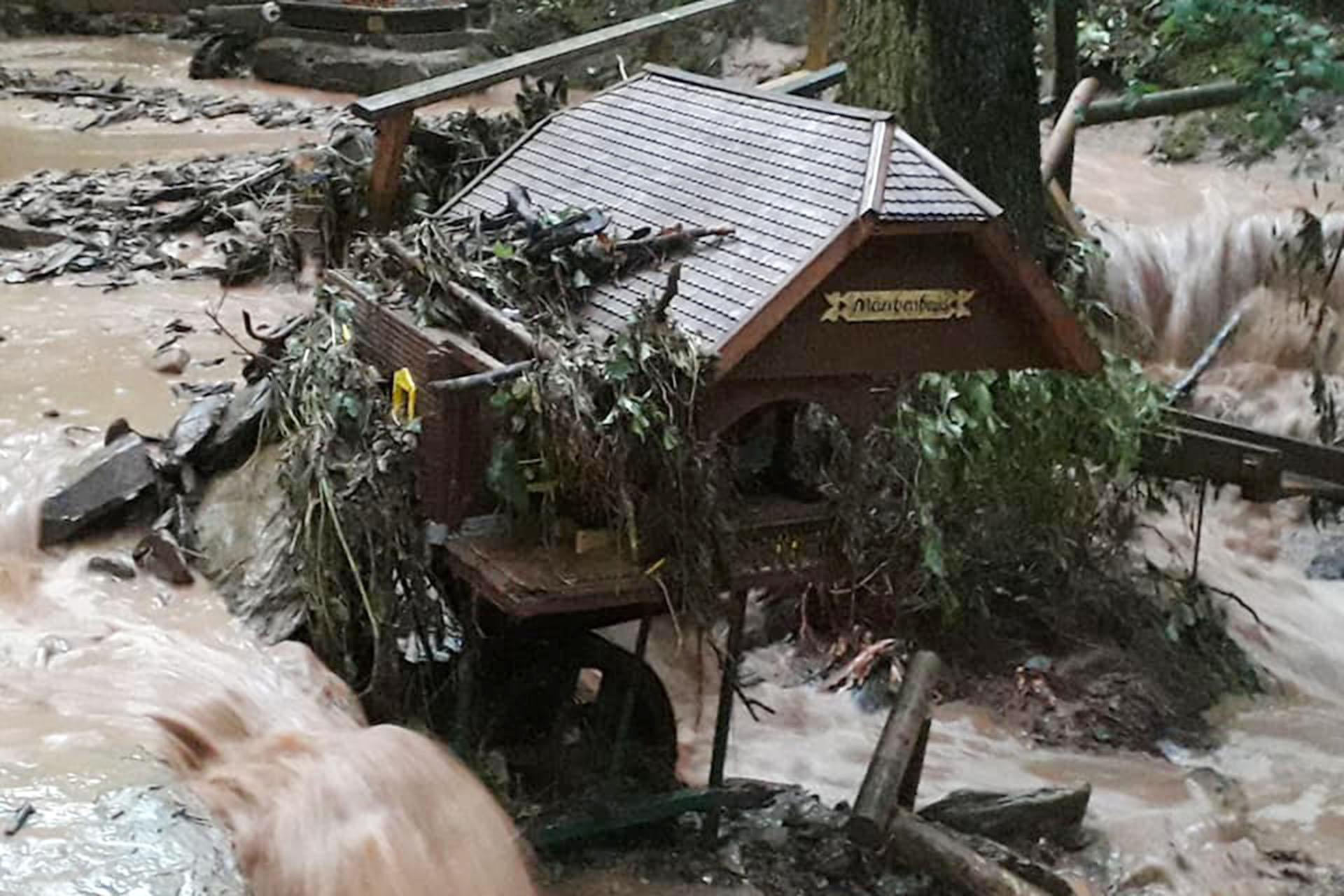 Bürgerstiftung Greiz: Der Märchenwald braucht nun unsere Hilfe!