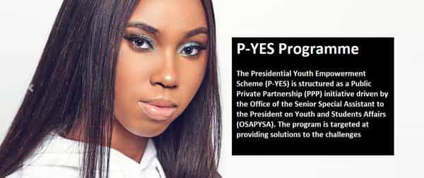 P-Yes Programme