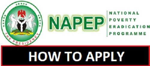 www.napep.gov.ng portal