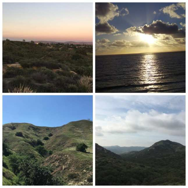 OC natural lands and beaches