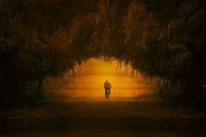 No Destination By: Luis Valadares