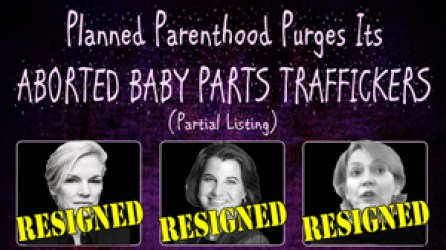 Aborted baby parts trafickers
