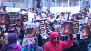 Trenton Rally for Life