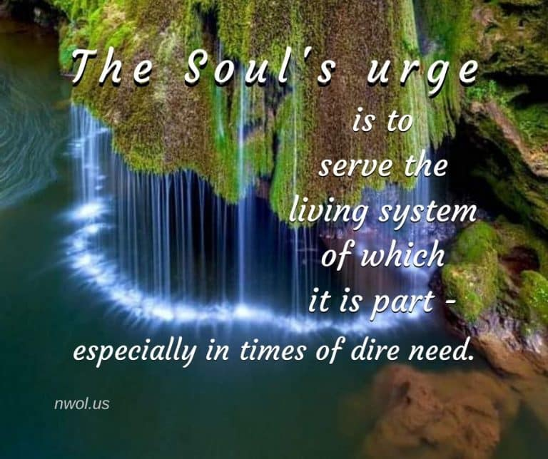 The-urge-of-the-soul-is-to-serve-3-173-768x644.jpg