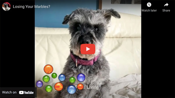 Idioms: Pluto the dog