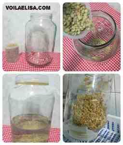 rejuvelac_bebida_saludable_batidos_verdes_probiotico_salud_intestinal