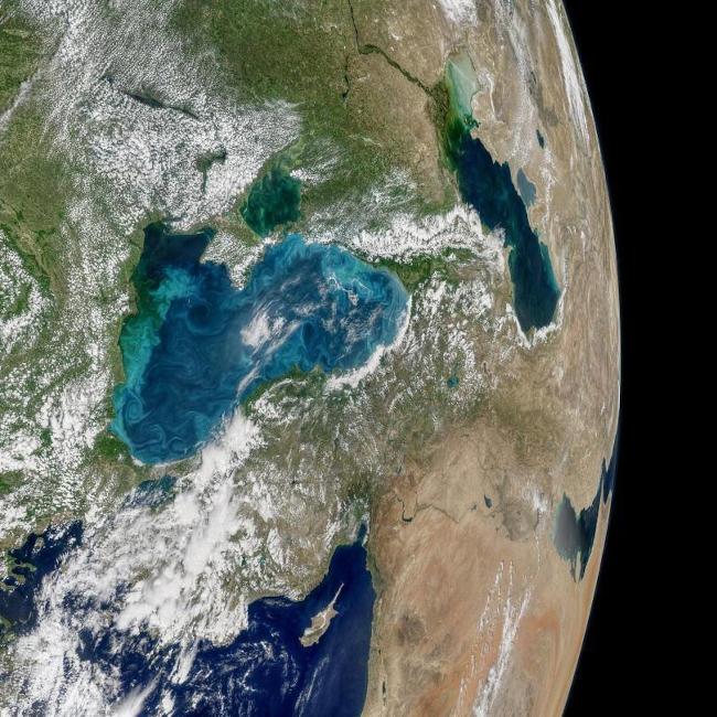 Изображение на цъфтежа на коколитофорите в Черно море и промяната на цвета му - Норман Кунинг, НАСА, Ocean Biology Processing Group.