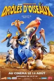 Drôles d'oiseaux (2012)