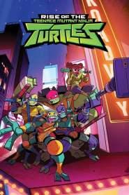 Les Tortues Ninja: Le destin des tortues Ninja Saison 1 VF