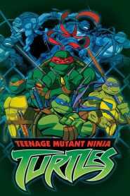 Les Tortues Ninja 2003 Saison 4 VF
