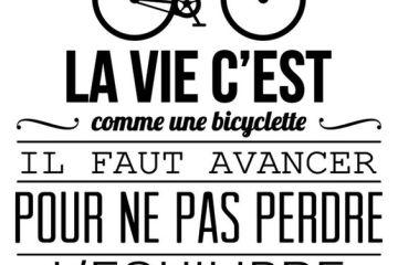 la vie c'est comme une bicylette, il faut avancer pour ne pas perdre l'équilibre