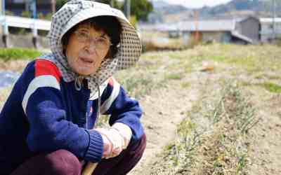 Okinawa Diet: Tips Hidup Lama