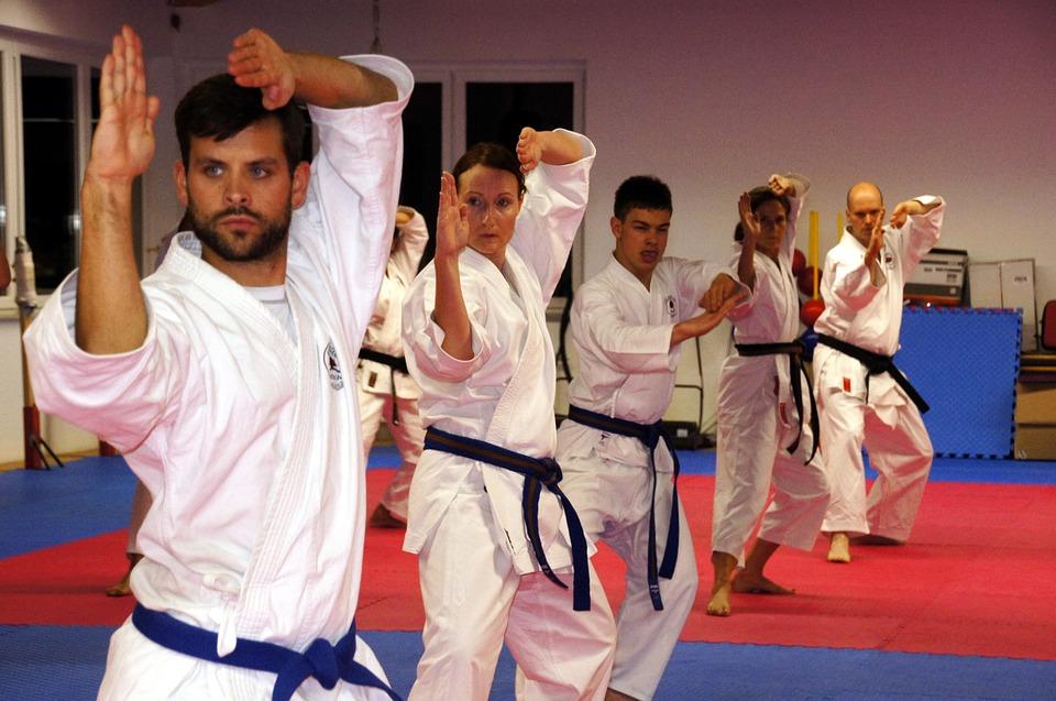 Поводом 53. Европског карате