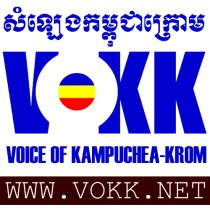 VOKK microphone