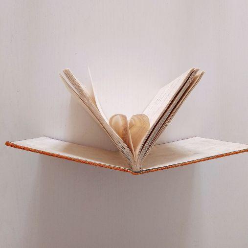 11 maggio 2006 è una poesia di Chiara Mancinelli che fa parte della raccolta di poesie L'amore giovane.