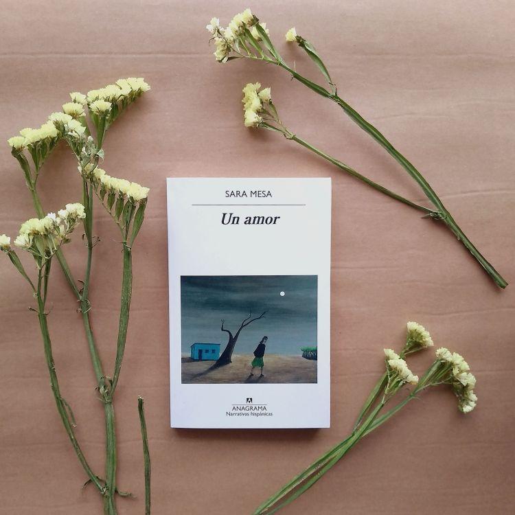 Sara Mesa, Un amor (Anagrama 2020). Reseña de Chiara Mancinelli.