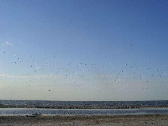 In Viaggio: Argentina (Miramar. Mar Chiquita)
