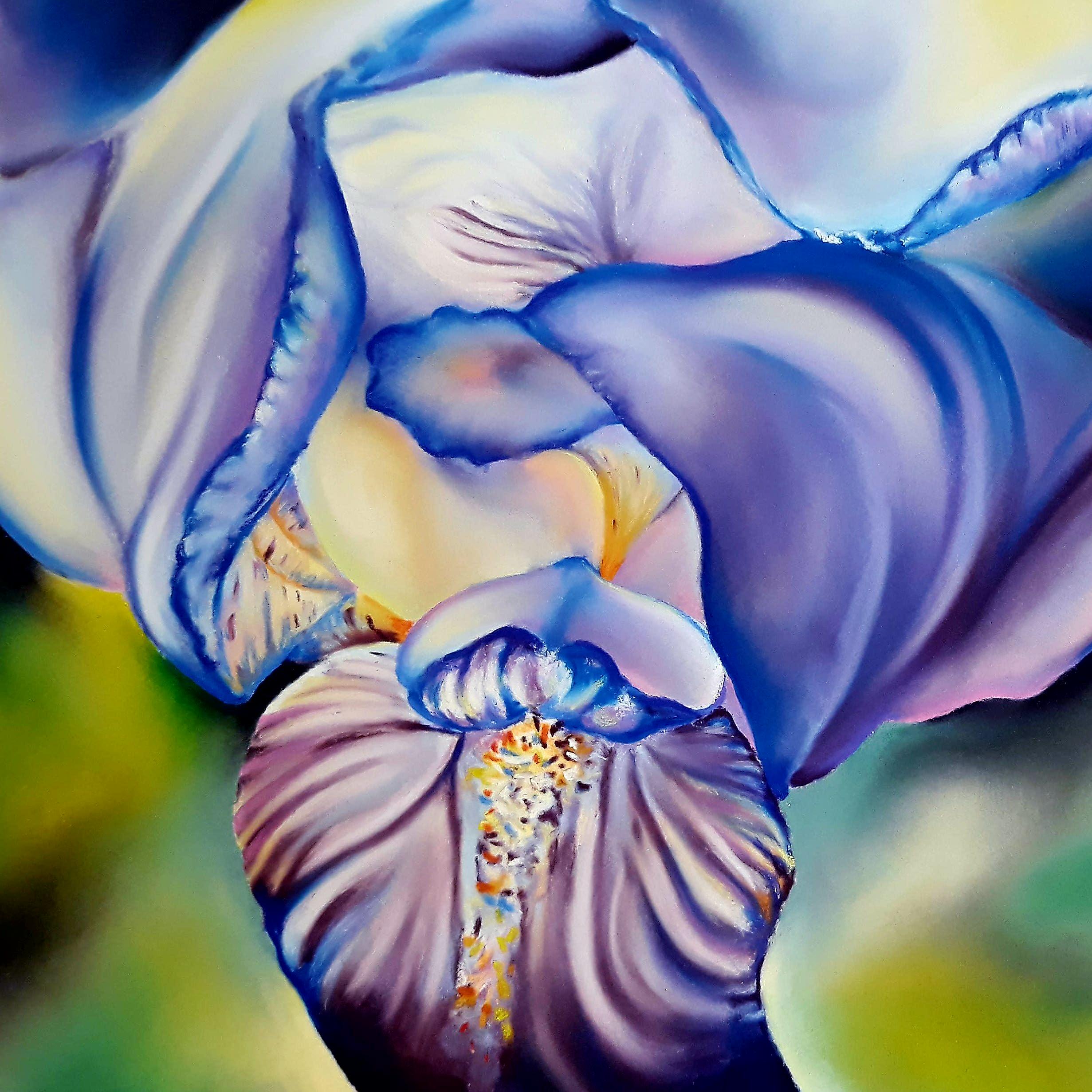 iris-bleu - pastel sur papier - 24 x 24 cm