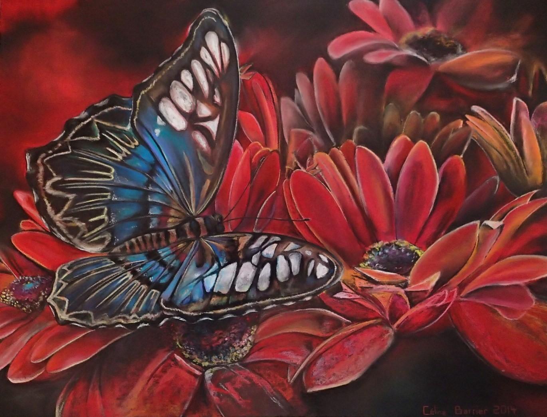 Celine-Barrier-butterfly garden