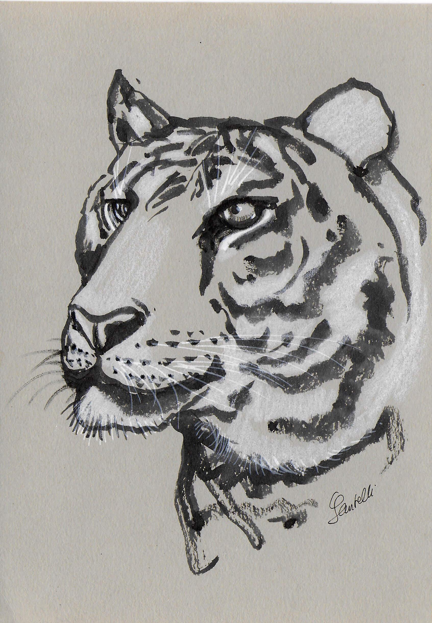 Claudine Santelli-tigre