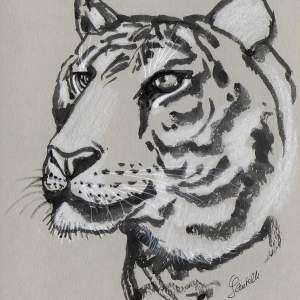 Claudine Santelli – Tigre