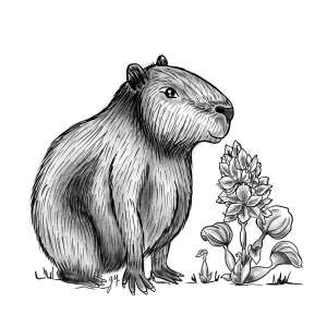 Gallïane Murmures – Capybara et sa jacynthe d'eau