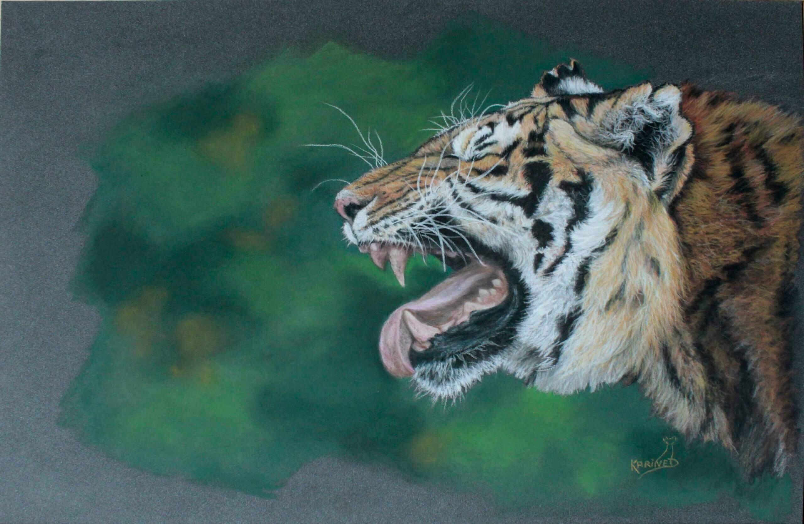 Karine D.-« Saphyr » tigre