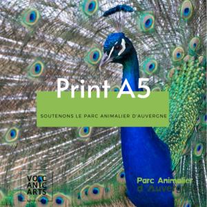 Prints A5