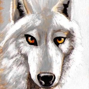 Claudine Santelli – Loup blanc