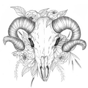 Gallïane Murmures – Goat skull