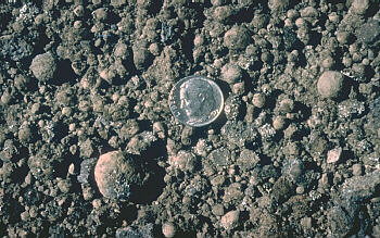 Close view of accretionary lapilli from Kilauea Volcano with US dime for scale