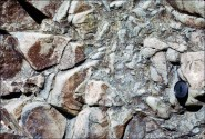 Brecciated texture: A breccia is broken rock that has been cemented back together naturally. Image: Volcanic breccia in Barberton Mountain Land, S. Africa. (© Vitor Pacheco, blog geologicalintroduction.baffl.co.uk).
