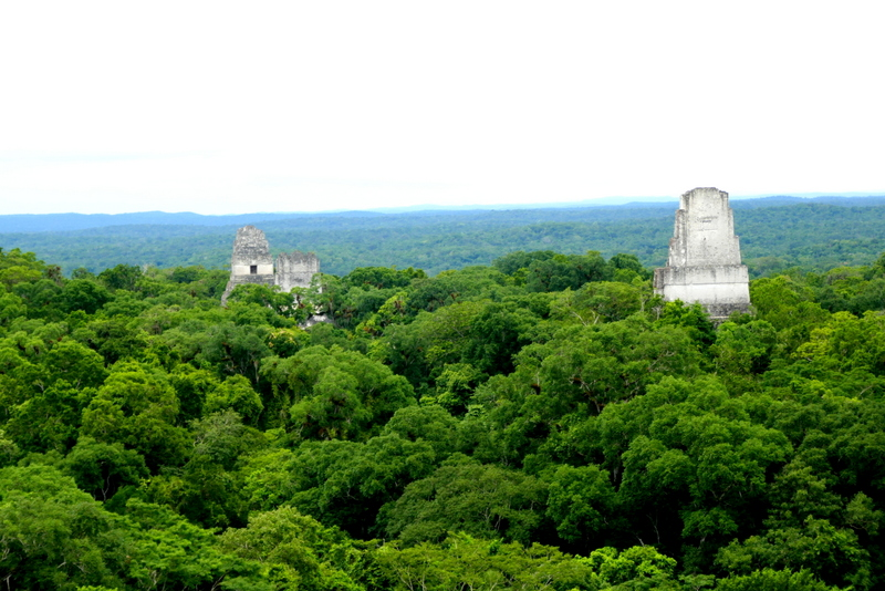 12 hours in Tikal, Guatemala: a plunge into the world of the Maya