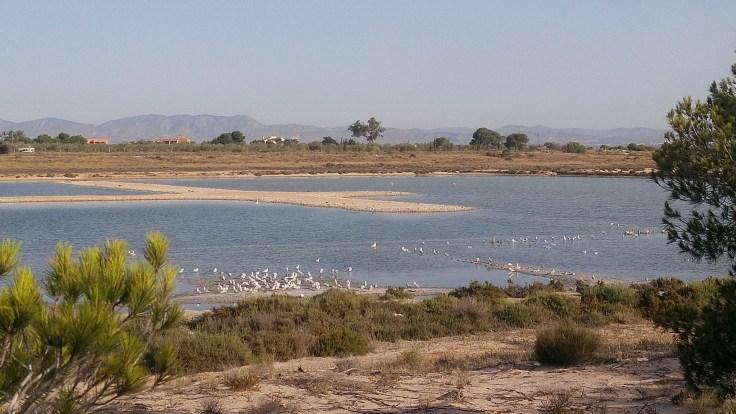 Salinas y Playa de Santa Pola