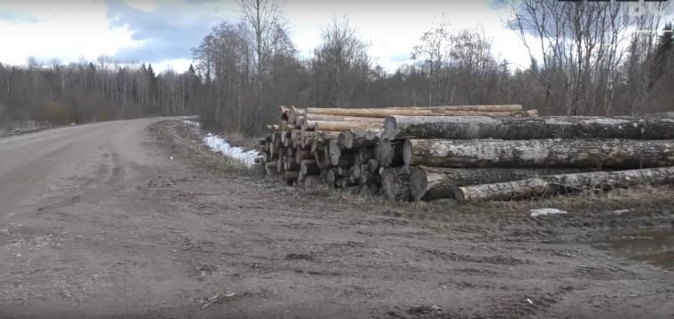 Волховская администрация дала комментарии относительно ситуации в деревне Хотово