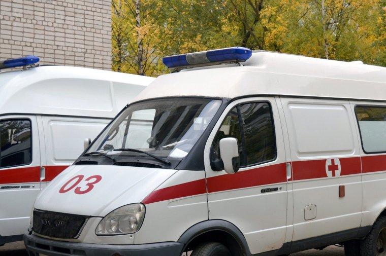Массовая закупка школьных автобусов и машин скорой помощи
