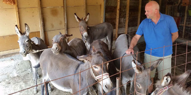 Darko Saveljić, vlasnik farme Magaraca Martinići