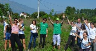 Danilovgrad: Akcija uklanjaja ambrozije